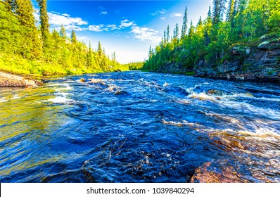 Summer forest river water landscape. Wild river in mountain forrest panorama