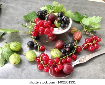 Summer fresh berries  green gooseberry red gooseberry red currant jostaberries black currant on the table with leaves with grey background