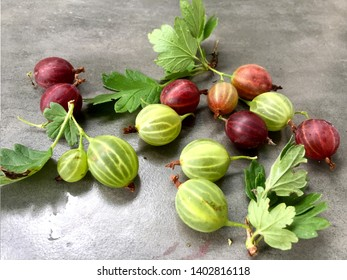Summer fresh berries  red gooseberries and green gooseberries on the table with leaves with grey background