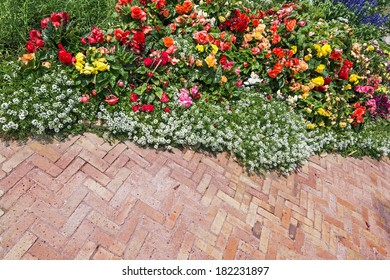summer garden with a walkway