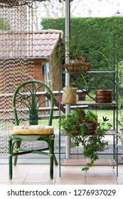 A summer glass terrace: a shelf with green flowers and a chair, a house as a background