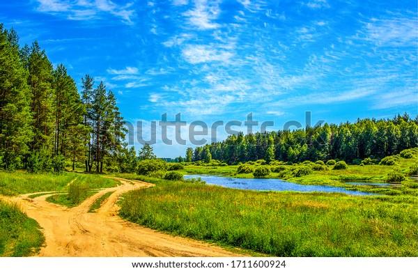 Summer green rural nature landscape. Summer nature view. Summer nature landscape