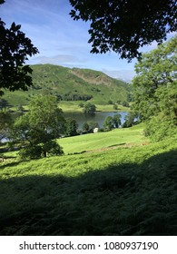 Summer green, Rydal Water, Lake District, Cumbria, England