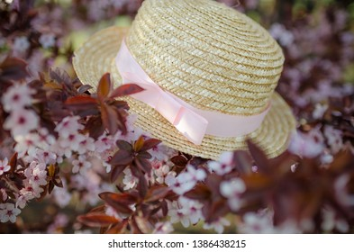 Summer hat on a beautiful flowering tree. Beautiful decor. Spring floral background. Photowall-paper for girls. Spring picture with a hat.