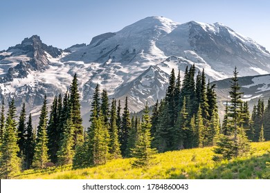 Summer Hike at Sunrise point Mount Rainier