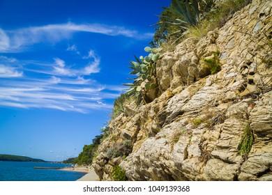 Summer holday destination island kampor with cactus on the coastline rock.