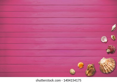 Summer Holiday background with shells