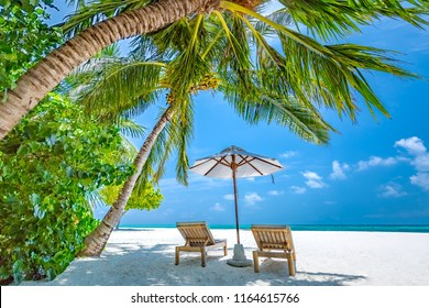 Summer holiday and vacation design. Inspirational tropical beach, palm trees and white sand. Tranquil scenery moody travel landscape