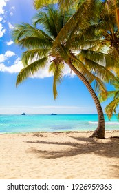 summer holidays background  - sunny tropical paradise beach with white sand and palms