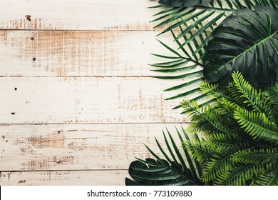 summer ideas concept with tropical leaf frame border on white vintage wooden background with free copy space
