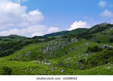 Summer in karst tableland