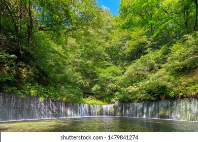 Summer Karuizawa - Shiraito Falls