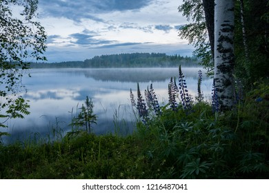 Summer lake landscape at dusk