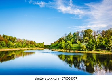 Summer lake near the forest with trees.
