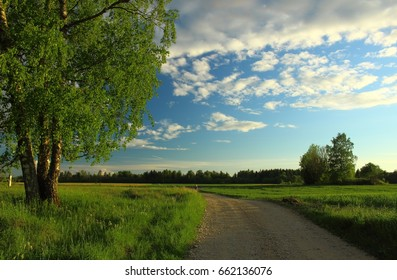 Summer landscape with beautiful clouds, birch and road.