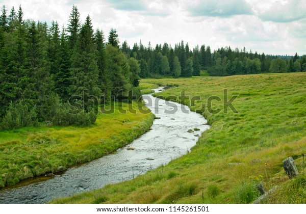 Summer landscape in Bohemian Forest. Czech Republic.