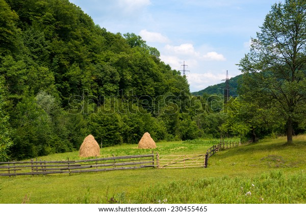 Summer landscape in Carpathian mountains in Ukraine