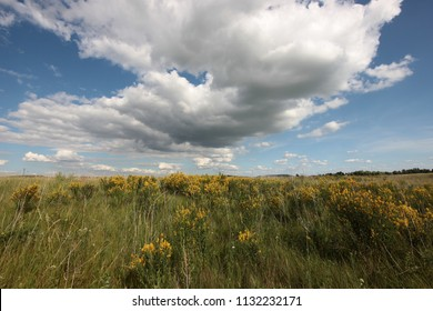 summer landscape with clouds over the road in the field