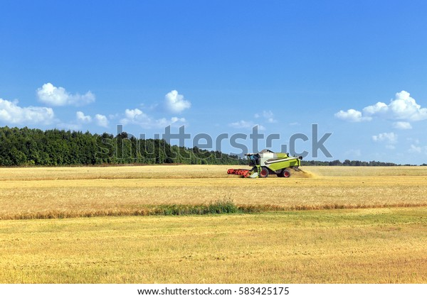 summer landscape combine harvester in the fields on a sunny day