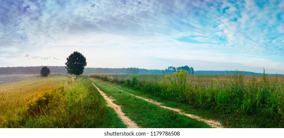 Summer landscape with country road and fields of stubble. Masuria, Poland.