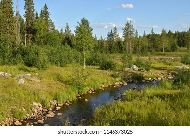 Summer landscape. Forest River in Finnish Lapland