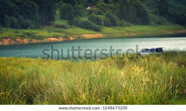 summer-landscape-grass-sunset-light-600w