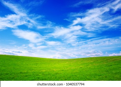Summer landscape with green grass and blue sky.