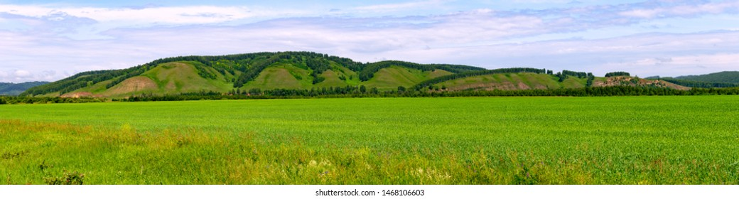 Summer landscape with green grass on a field and beautiful sky, Bashkortostan, Russia