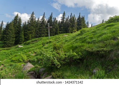 Summer Landscape with green hills of Vitosha Mountain, Sofia City Region, Bulgaria