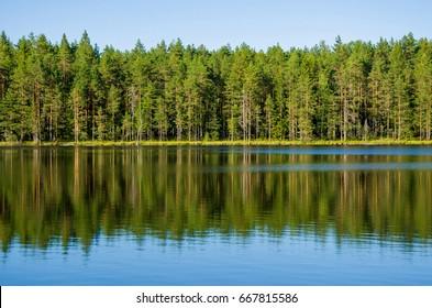 Summer landscape of Karelia to the lake
