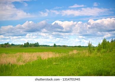 Summer landscape. Kostroma, Russia.