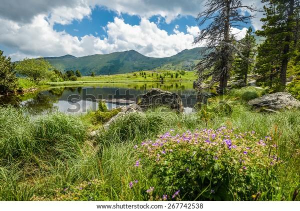 Summer landscape with lake and Alps-Biosphaerenpark Nockberge ,Austria.