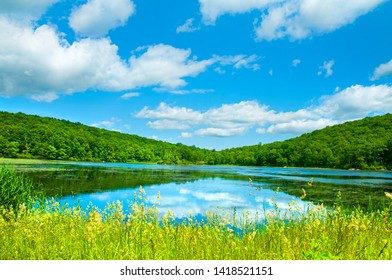 Summer Landscape lake and blue sky. Beautiful wild nature, forest. Lake with mirror reflections on sunny day.