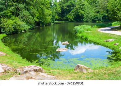 Summer landscape with lake walking path in an old park.