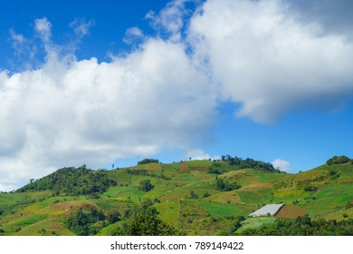 Summer landscape in mountains and blue sky