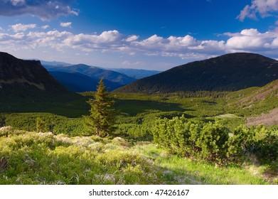 Summer landscape in mountains Carpathians, Ukraine