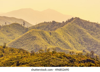 Summer landscape in the mountains in morning sunrise