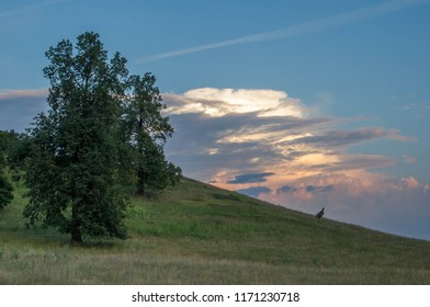 Summer landscape, mountainside on the background of the setting sun