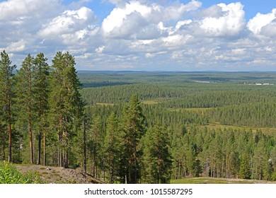 Summer landscape in northern hills in finnish Lapland