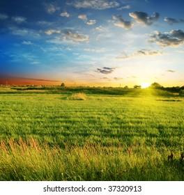 summer landscape on a background beautiful sunset
