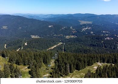 Summer landscape of Rhodope Mountains from Snezhanka peak, Smolyan Region, Bulgaria