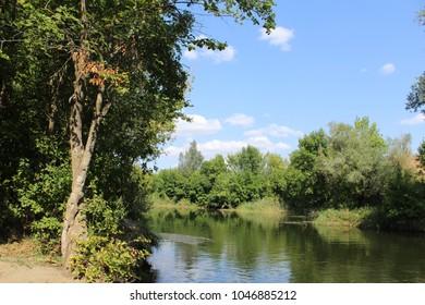 summer landscape river in summer