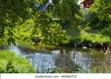 summer landscape, the river and the grass