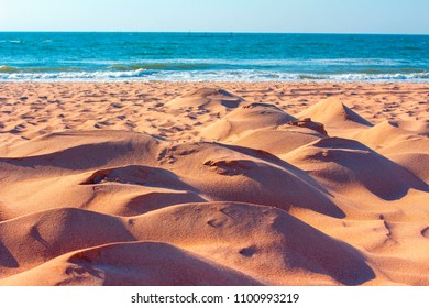 summer landscape with sandy dunes on the beach