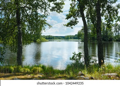 Summer landscape. In the shade under the trees on the shore of a forest lake. Russia, Finland, North, Karelian Isthmus, Lake Vuoksa