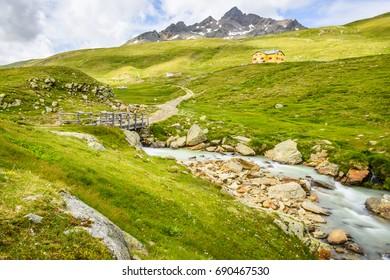 Summer landscape of small river in Italian Alps on Gavia pass