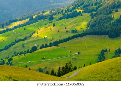 Summer landscape of Switzerland rural country side, near Habkern village