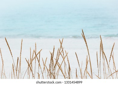 Summer landscape travel minimal background nature calm scenic view
