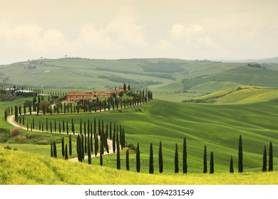 Summer landscape in Tuscany, Italy, Europe