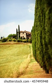 Summer landscape in Tuscany with tall cypresses and farmhouse